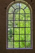 Iron, Steel, Sprout, Plant Window