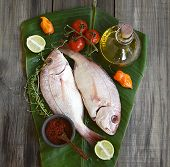Fresh fish with vegetables