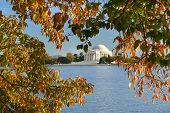Washington DC, Thomas Jefferson Memorial in Autumn