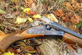 image of shotgun  - A wooden retro shotgun in autumn style - JPG