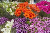 Arrangement Of Flowers In A Market Stall