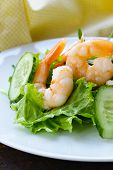 green salad with fresh cucumbers and shrimps