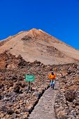 pic of canary  - Landscape on the volcano Teide in Tenerife island  - JPG