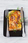 Appetizing Lasagna