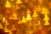 yellow fir trees shape photo as background