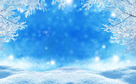 picture of snow forest  - winter  christmas background - JPG
