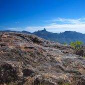 picture of parador  - Gran Canaria - JPG