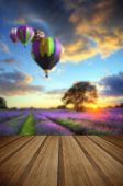 stock photo of lavender field  - Lavender fields in English countryside landscape with hot air balloons flying high with wooden planks floor - JPG