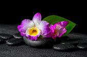 foto of calla  - closeup of spa background with purple orchid dendrobium and green leaf Calla lily drops on black zen stones - JPG