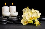image of yellow orchid  - beautiful spa concept of yellow orchid phalaenopsis and candles on black zen stones with drops closeup - JPG