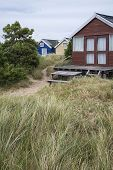 foto of beach hut  - Beach huts on sand dunes and beach landscape - JPG