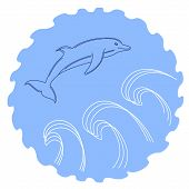 pic of dolphins  - Pretty little dolphin jumping in the waves - JPG
