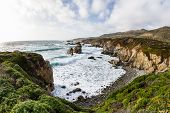 image of foreground  - beautiful scene of the California coast with its classic dramatic coastline lined with rocks and cliffs and spring green plants in the foreground - JPG