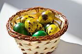 stock photo of quail  - The picture shows the painted quail eggs in a basket - JPG