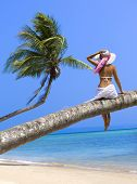 Woman on the beach sitting back on palm tree
