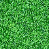 Green grass seamless pattern for continuous replicate.
