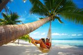 pic of palm-reading  - view of nice woman reading a book in hammock in tropical environment - JPG