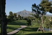 Aloha Golf Course In Marbella Spain
