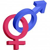 Red and blue male female 3D gender symbols interlocked isolated on white.