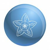 Botany Flower Icon. Simple Illustration Of Botany Flower Vector Icon For Web Design Isolated On Whit poster