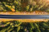 Aerial View Of The Road In Forest. Top View Of Asphalt Roadway poster