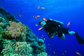 Young Woman Scuba Diver on coral reef in clear blue water