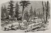 Old illustration of caravan near Cisco, along Union Pacific Railroad, Nevada. Original, by Lancelot, was published on L'Illustration, Journal Universel, Paris, 1868