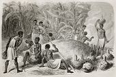Old illustration of African indigenous drinking millet beer. Created by Bayard and Huyot, published