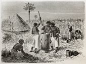 Old illustration of women crushing sorghum in Unyamwezi village, Tanzania. Created by Bayard, published on Le Tour du Monde, Paris, 1864