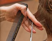 hairdresser cutting wet hair close-up, hair salon