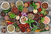 Large herb and spice food selection dried and fresh on rustic wood background. With chilli pepper va poster
