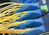 Cables de red azules y amarillas enchufados el eje en el bastidor de la computadora