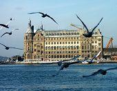 een beeld van vogels vliegen en Haydarpasa Station in Istanboel