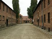 Auschwitz - Execution Place