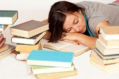 Bookworm Sleeps Over Her Books