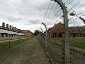 Auschwitz - Kitchen Near Enclosure