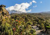 Cone de Kibo, Parque Nacional do Monte Kilimanjaro