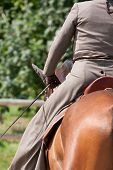 Reiten auf braunen Lusitano Pferd