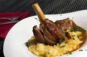 stock photo of lamb shanks  - Braised lamb shank in mint and rosemary gravy - JPG