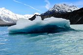 Iceberg Floating In Lake Tasman
