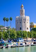 The Tower Of Gold, In Seville, Southern Spain