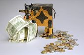 Cattle Shape Money- Box