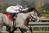 Stardom Bound Wins The Santa Anita Oaks