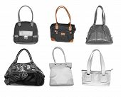 Woman Accessories Handbags