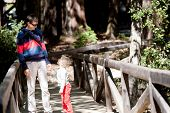 pic of redwood forest  - smiling happy father and his son hiking in redwood forest caucasian family of two enjoying time together outdoors - JPG