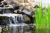 Jardín cascada