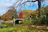 Panorama del Parque Central de Nueva York Manhattan en Lago de otoño con puente rascacielos y colorido tr