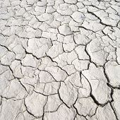 detail of a cracked earth