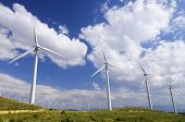 line of wind turbines for electricity production