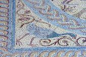 Mosaic in the Roman ruins of Conimbriga, Las Beiras, Portugal